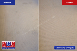 Carpet Cleaning - Before / After