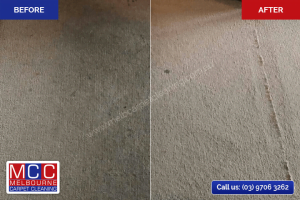 Before / After - Carpet Cleaning